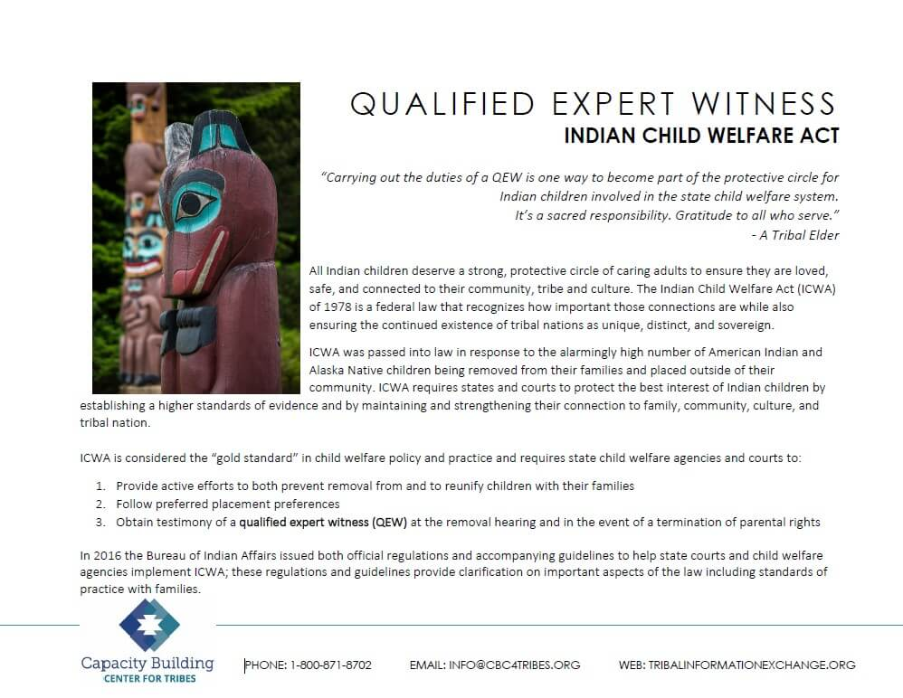 Qualified Expert Witness Cover