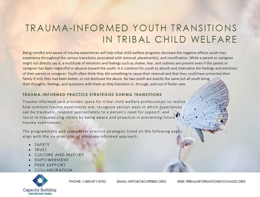 trauma informed youth transitions cover