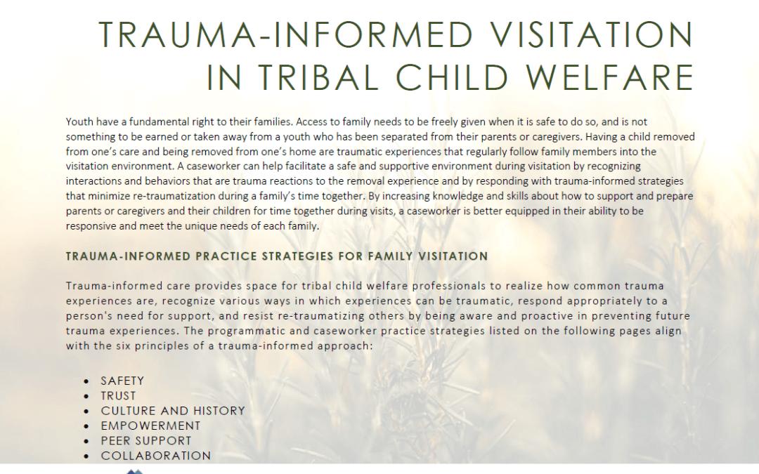 trauma informed visitation fact sheet cover